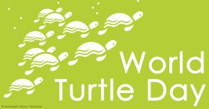 World-Turtle-Day-2017