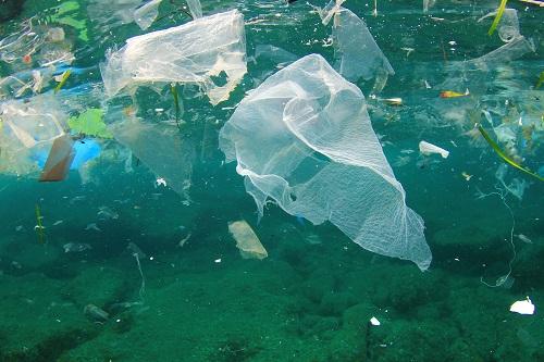 plastic-bag-ocean-ver1