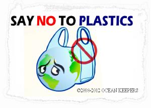 PLASTIC-WORLD-3-300x215