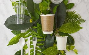 Vegware_concept_brand_image_leaves_800x-600x372