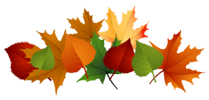 cartoon-fall-leaves-3