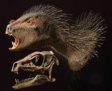 220px-Heterodontosaurus_model