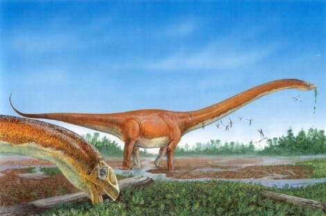 JNO5lby0fV-Dinosaurus_-_Dinosaur_-_Dinosaurio_-_Dinosaure_-_Mamenchisaurus001