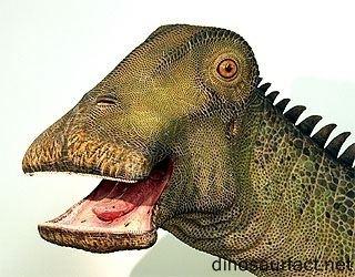 nigersaurus-12eb6dde-70da-486b-8c0d-ceca62a5d39-resize-750