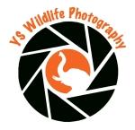 YS+Logo+Elephant