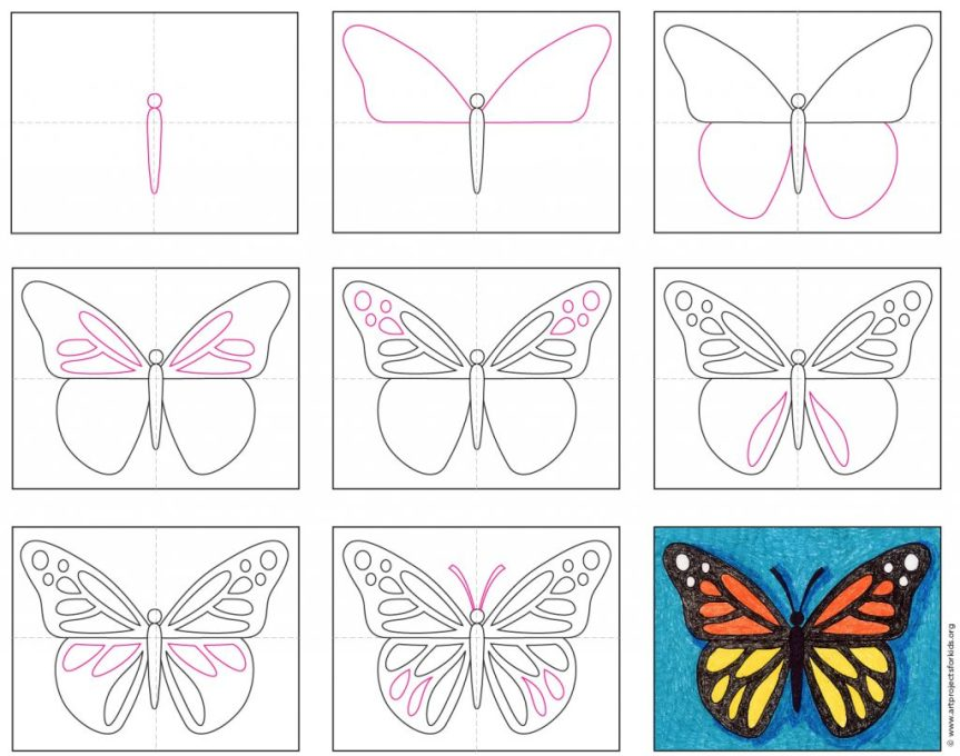 Butterfly-diagram-1024x808