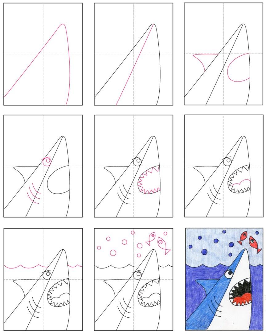 Shark-Cartoon-diagram